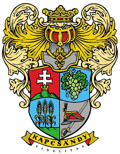 logo_kapcsandy