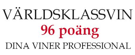 96p_dina_viner_professional